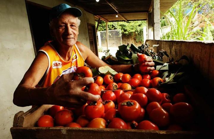 Arnaldo Avelino - Produtor Agroprata
